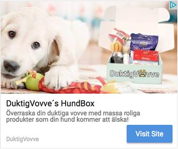duktig vovve hundbox